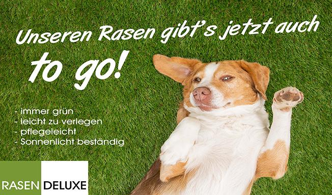 Urlaub im Garten - Hund fühlt sich wohl auf Kunstrasen von Rasen Deluxe
